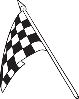 Checkered Flags 20